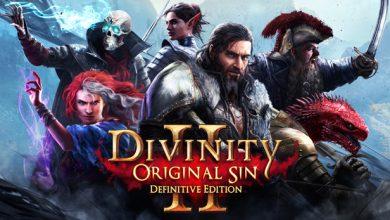divinity-original-sin-2-gameolog