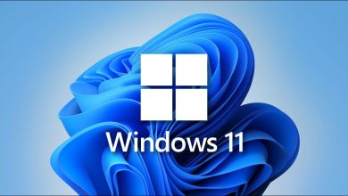 windows-11-gameolog