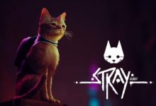 stray-gameolog